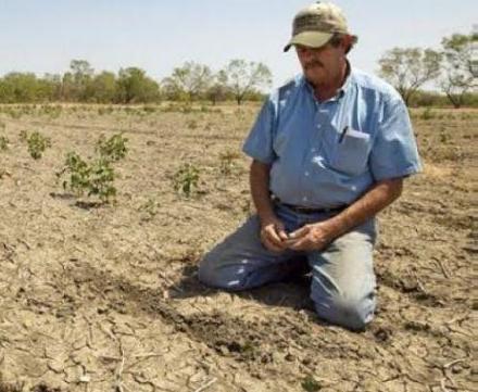 Republic of Moldova drought response/Crop Assessment Report