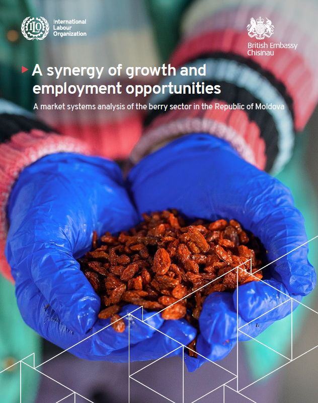 A market systems analysis of the berry sector in the Republic of Moldova