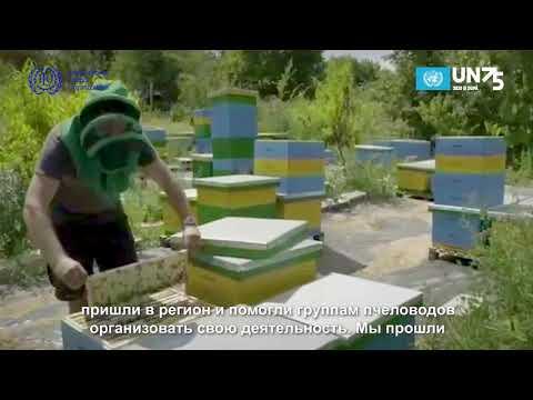 Message on UN Day from ILO Moldova partner